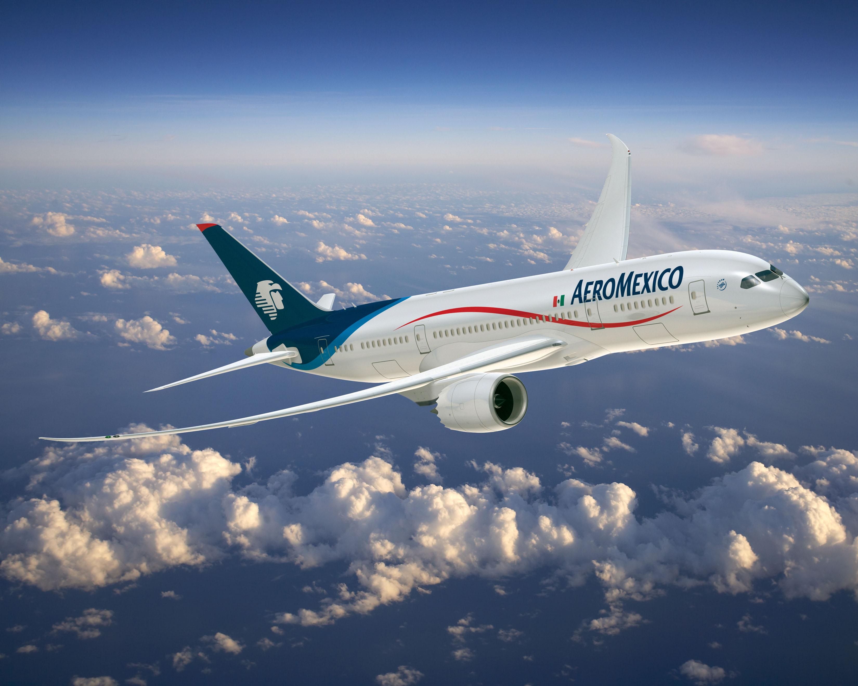 Aeromexico – 航空運輸翻訳