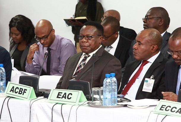 African Capacity Building Foundation(アフリカン・キャパシティ・ビルディング・ファンデーション)経済翻訳