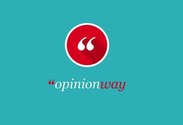 Opinion way(オピニオン・ウェイ) マーケティング翻訳